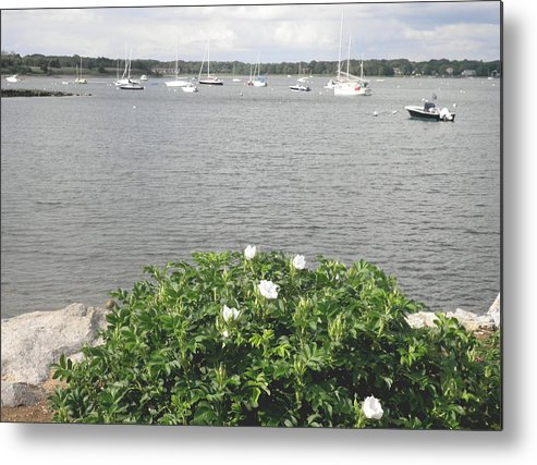 Wickkford Harbor Metal Print featuring the photograph Wickford Harbor by Kate Gallagher