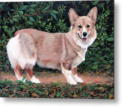 Dog Metal Print featuring the painting A Portrait Of Pickle by Sandra Chase