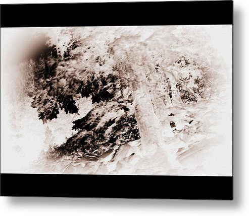 Nature Metal Print featuring the photograph Askew Nature Picture by Angie DeShong