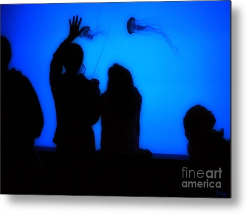 Jellyfish Metal Print featuring the photograph Jellyfish 1 by Jeff Breiman