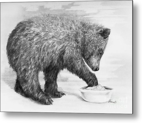 Bear Metal Print featuring the drawing Just Right by Meagan Visser