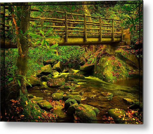 Moss Metal Print featuring the photograph Moss Bridge by Mary Young
