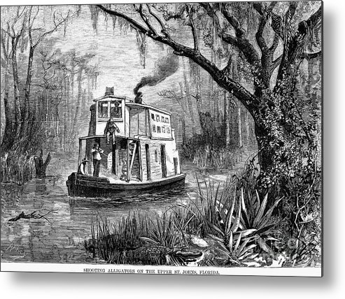 1874 Metal Print featuring the photograph Florida: St. Johns River by Granger