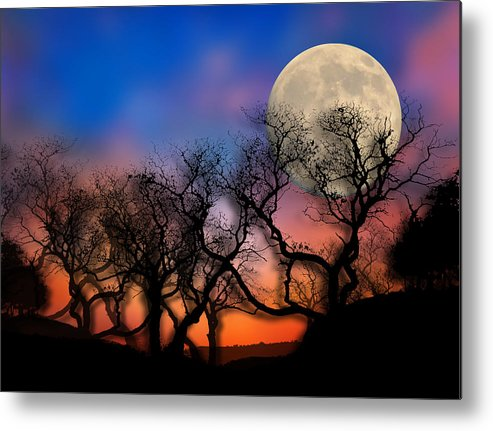 Trees Metal Print featuring the photograph 2033 by Peter Holme III