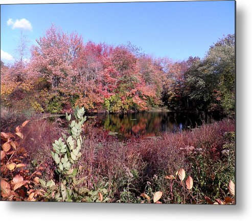 Autumn Leaves Metal Print featuring the photograph A Walk In The Woods by Kate Gallagher
