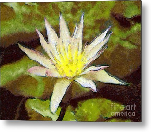 Water Lily Metal Print featuring the painting Water Lily by Odon Czintos