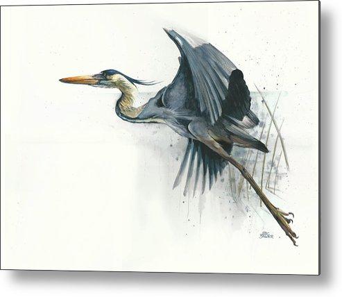 Bird Metal Print featuring the painting Blue Heron by Marc Brawner