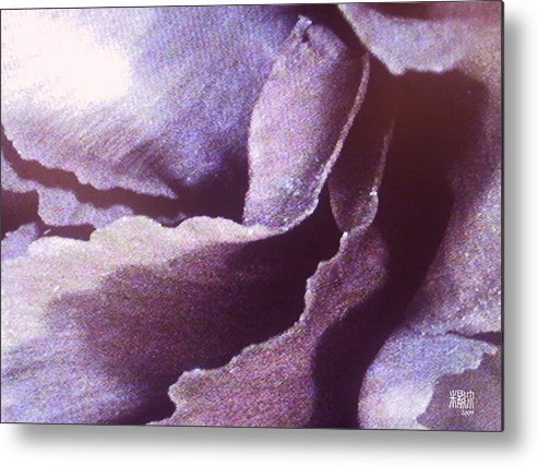 Microscopic Metal Print featuring the photograph Carnation by Michele Caporaso