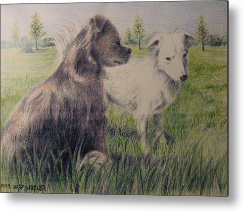 Dogs Metal Print featuring the drawing Dogs In A Field by Larry Whitler