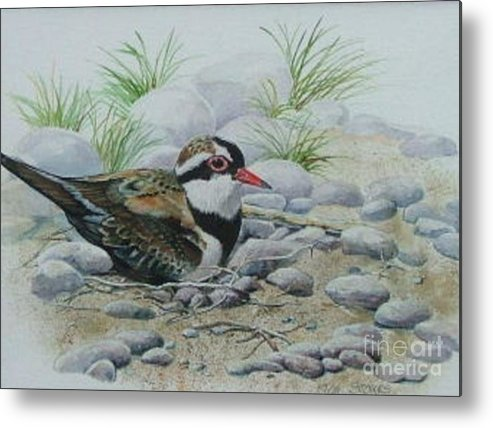 Pebbles Metal Print featuring the painting Dotterol by Val Stokes