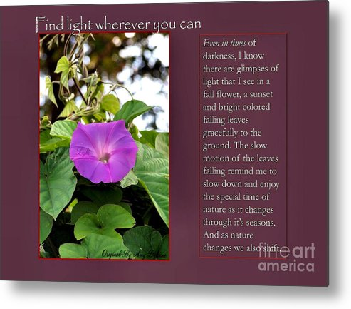 Inspirational Metal Print featuring the photograph Find Light Wherever You Can by Amy Delaine