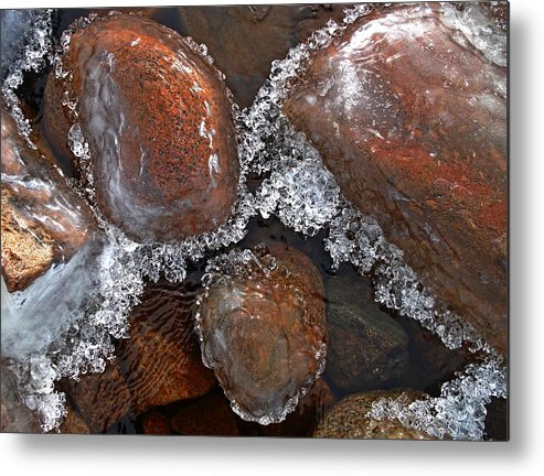 Ice Metal Print featuring the photograph Frozen Jewels by Tim Beebe