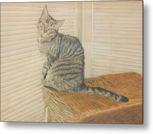 Tabby Cat Metal Print featuring the painting Goldberry by Miriam A Kilmer