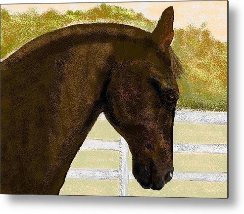 Horse Metal Print featuring the digital art Golden Chance by Carole Boyd