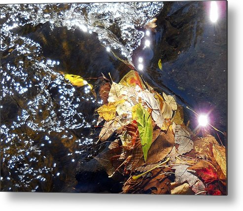 Leaves Metal Print featuring the photograph Leaves In River by Wolfgang Schweizer
