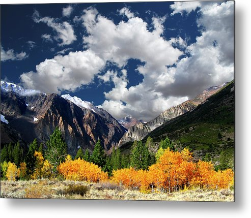 Horizontal Metal Print featuring the photograph Parker Canyon Fall Colors California's High Sierra by Bill Wight CA