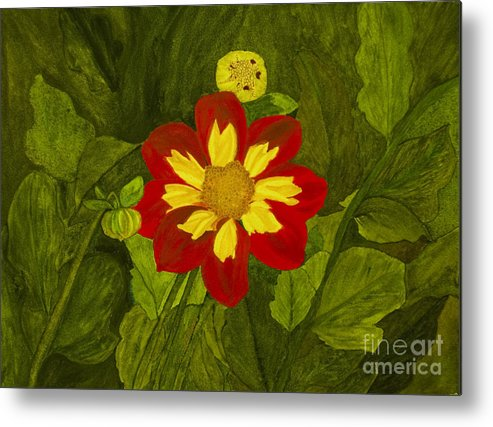 Red Metal Print featuring the painting Red Dahlia by Louise Magno