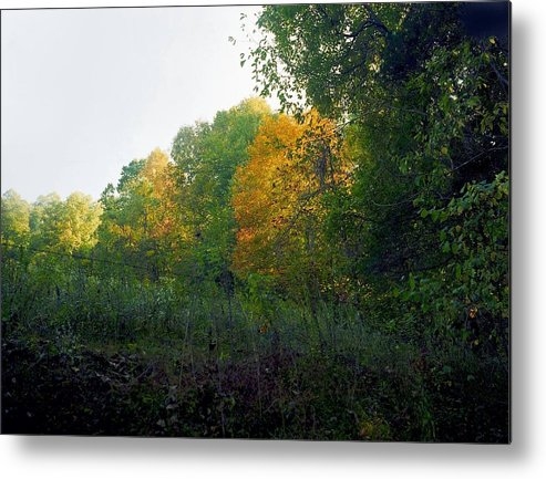 Autumn Metal Print featuring the photograph Sand Gap Hillside by George Ferrell