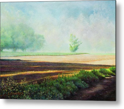 Landscape Metal Print featuring the mixed media Strange Encounter by Lynn Bywaters