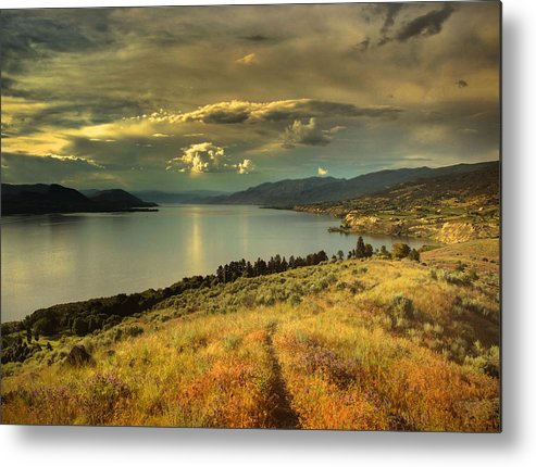 Lake Metal Print featuring the photograph The Evening Calm by Tara Turner