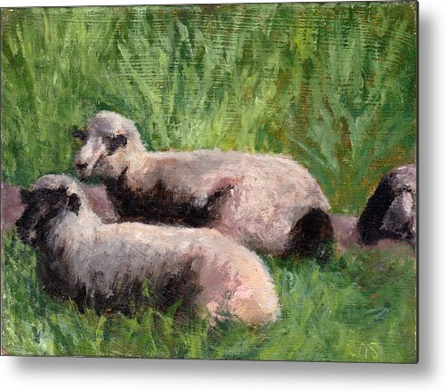 Animals Metal Print featuring the painting The Sheep Are Resting by Chris Neil Smith