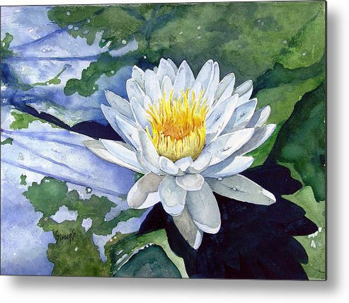 Flower Metal Print featuring the painting Water Lily by Sam Sidders