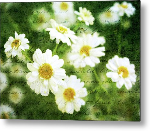 Spring Flowers Metal Print featuring the photograph Whispers Of Spring by Cathie Tyler