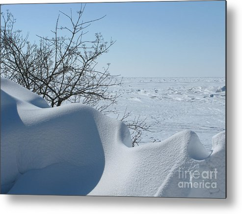 Winter Metal Print featuring the photograph A Gentle Beauty by Ann Horn