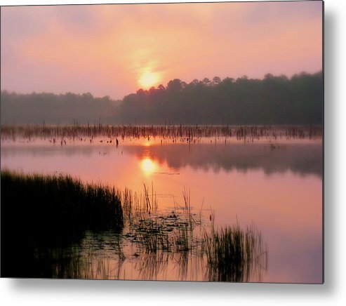 Alabama Metal Print featuring the photograph A Wetlands Sunrise by JC Findley