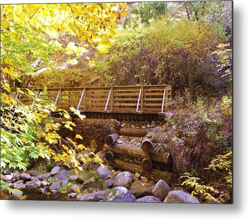 Oregon Metal Print featuring the photograph A Woodsy Walk In Golden Fall Color by Cherie Cokeley