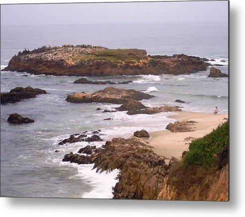 Coast Metal Print featuring the photograph Coastal Scene 9 by Pharris Art
