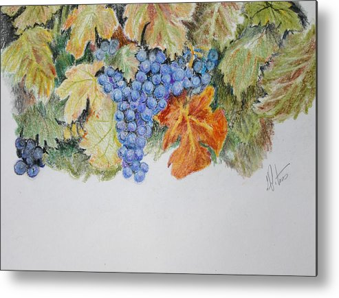 Grapes Metal Print featuring the painting Cran-grapes by Gregory Peters