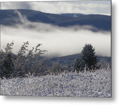 Metal Print featuring the photograph Fog And Frost by Heather Farr
