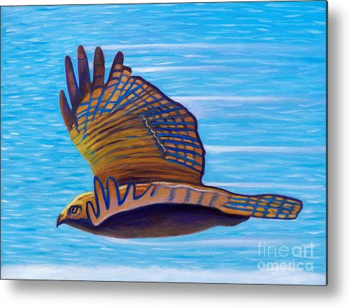 Hawk Metal Print featuring the painting Hawk Speed by Brian Commerford