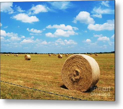 Photography Metal Print featuring the photograph Hayfield by Venus