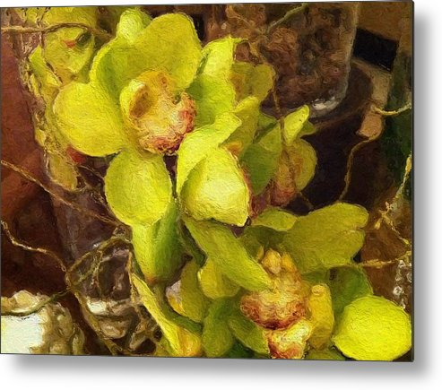 Orchid Prints Metal Print featuring the painting Orchid Flourish by Lyn Pacific
