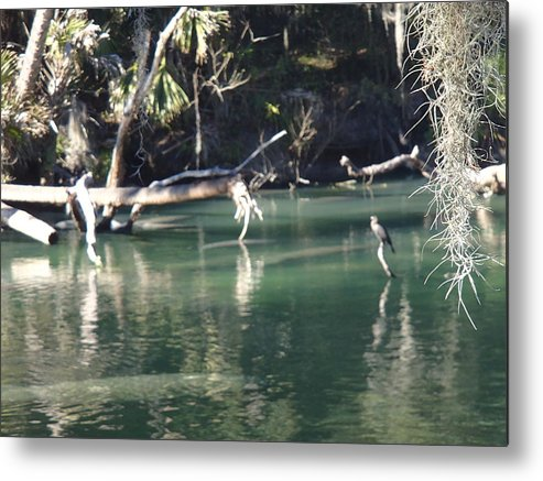 Landscape Metal Print featuring the photograph Peaceful River by Barbara Adkins