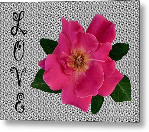 Pink Metal Print featuring the photograph Pink Tea Rose Love by Renee Marie Martinez