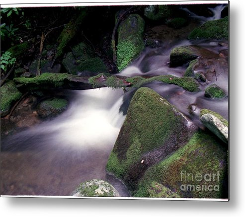 Smoky's Metal Print featuring the photograph Smoky Mountain Stream by William B Farr