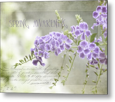 Photo Art Metal Print featuring the photograph Spring Awakening by Julie Palencia