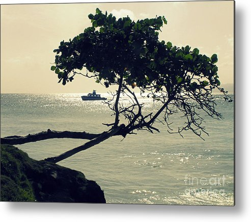 Shore Metal Print featuring the photograph The Dream Still Alive by Irina Davis