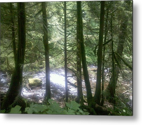 Waterfall Metal Print featuring the photograph Through The Trees by Heather L Wright