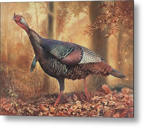 Wild Turkey Metal Print featuring the painting Wild Turkey by Hans Droog