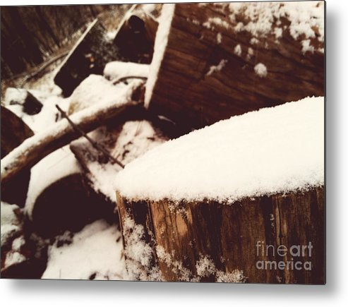 Nature Metal Print featuring the photograph Winter by Rachel Barrett