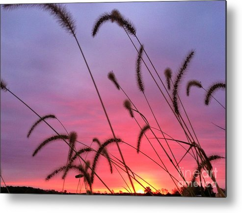 Sunrise Metal Print featuring the digital art Autumn Sunrise At The Cemetery On Coal Bank by Michelle Hawk