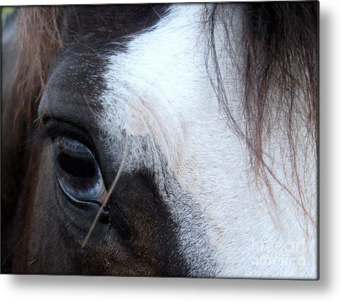 Blue Eye Metal Print featuring the photograph Blue Eyed Girl by Kim Yarbrough