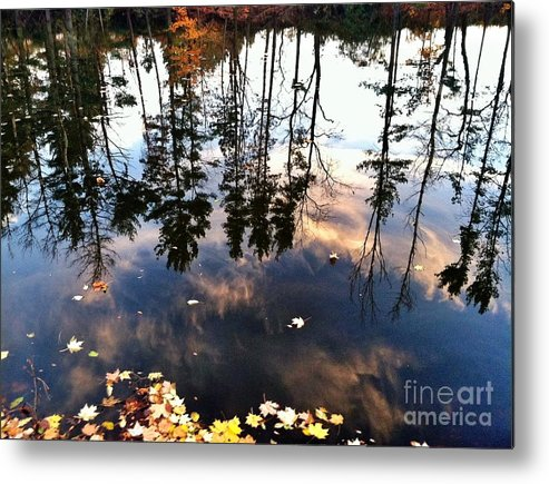 Water Metal Print featuring the digital art Fall Reflection Of Pines by Michelle Hawk