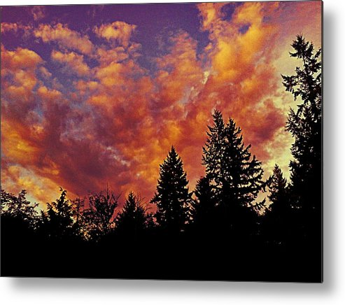 Fiery Metal Print featuring the photograph Fiery Evening by Kevin D Davis