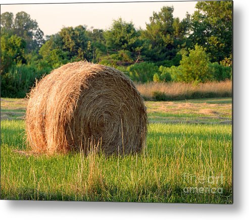Hay Metal Print featuring the photograph Haybale by Louise Peardon