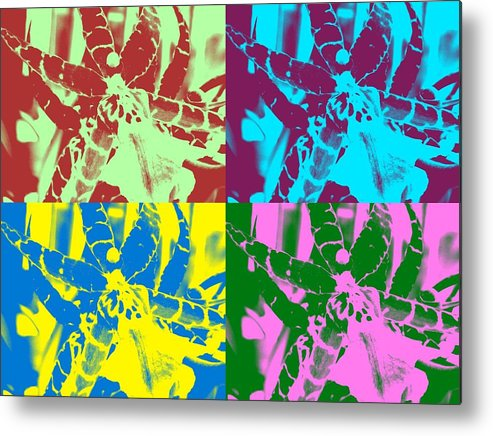Orchid Metal Print featuring the photograph Hot Orchids by Mindy Newman